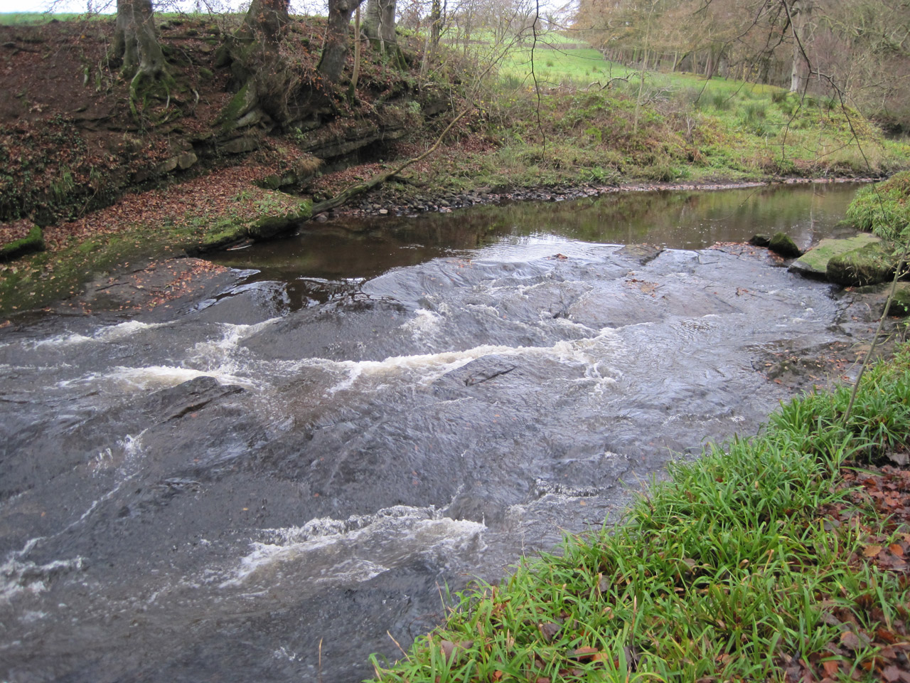 river-flowing-28761290721162mPZ
