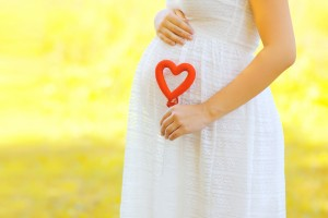 Pregnancy, maternity and new family concept - pregnant woman holding red heart symbol outdoors in sunny summer day